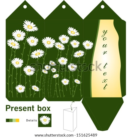 Gift box template with daisy - stock vector