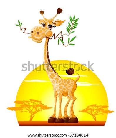 Giraffe - stock vector