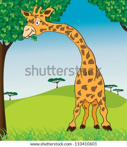 Giraffe in african nature - stock vector