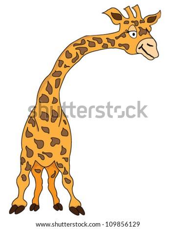 Giraffe isolated on white - stock vector