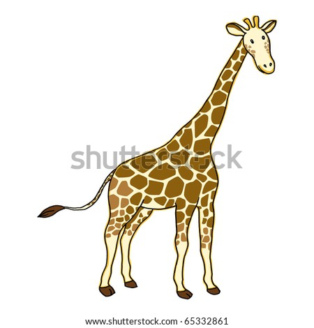 Giraffe on white background. Vector.