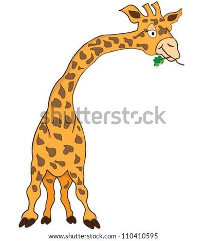 Giraffe over white background - stock vector