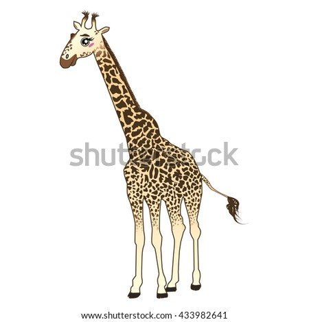 Giraffe vector cartoon