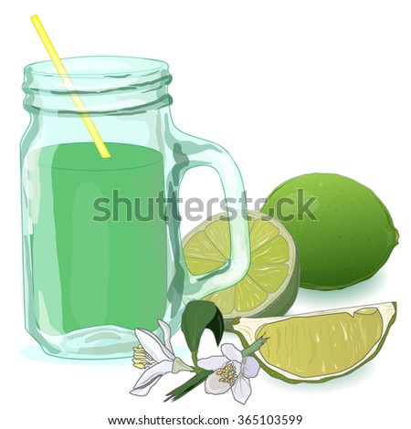 glass filled with fresh made lime juice. Fresh lime vector collection - stock vector