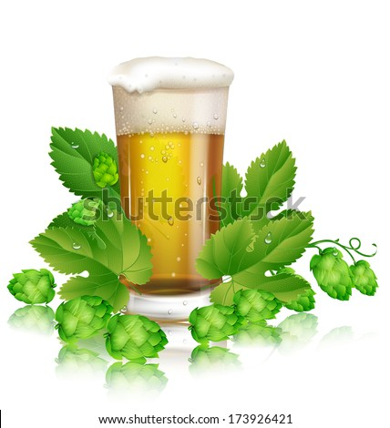 glass of beer and hops - stock vector