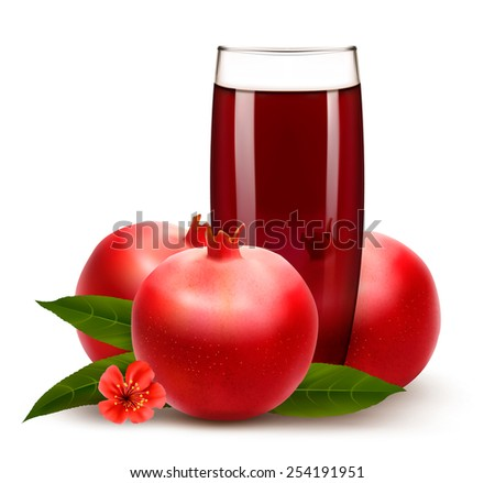 Glass of pomegranate juice with fruit. Vector.  - stock vector