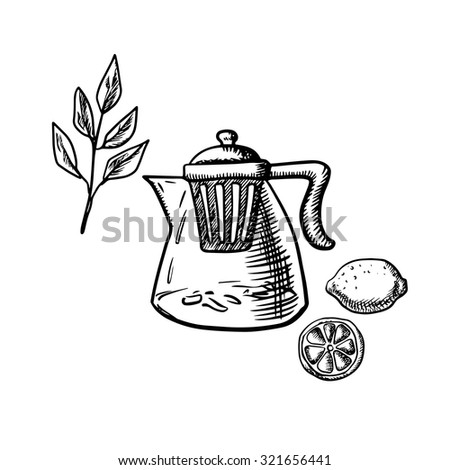 Glass teapot with infuser strainer, fresh twig of tea bush, whole and sliced lemon fruit isolated on white background. Sketch style - stock vector