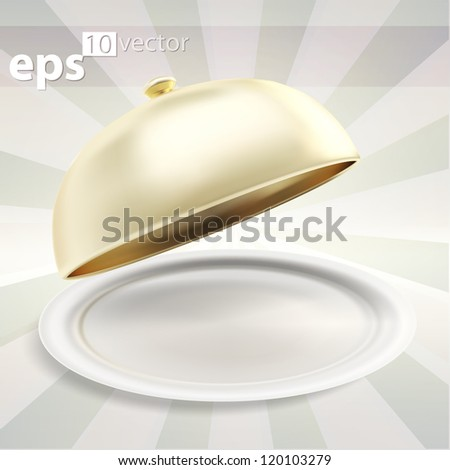 Glossy ceramic salver dish with an empty copyspace food cover over it, eps10 vector composition illustration - stock vector