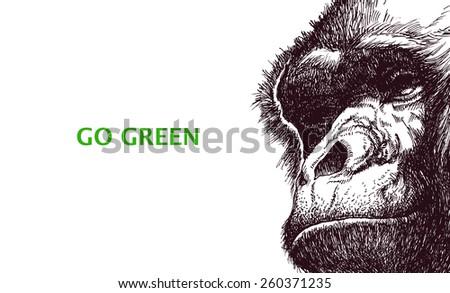 Go green. Poster with gorilla head. Vector illustration. - stock vector