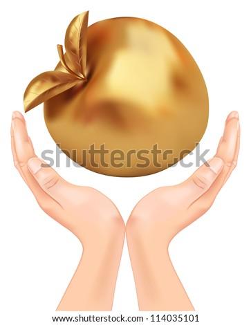 golden apple in hand. vector - stock vector