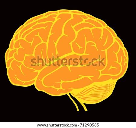 golden brain for web design on black background - stock vector
