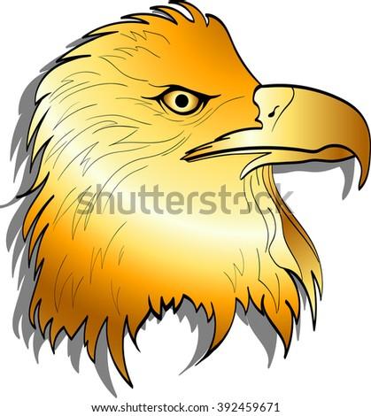 Golden Eagle head. Vector - stock vector