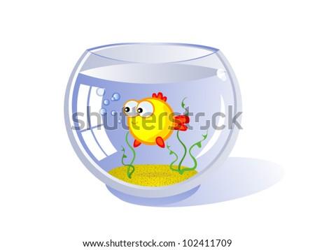 Goldfish in an aquarium. Vector cartoon drawing. Humor. Isolated. - stock vector
