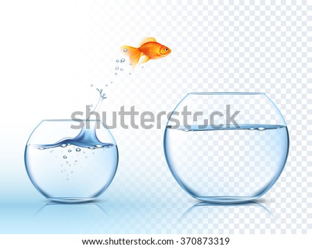 Goldfish jumping out one fishbowl to another aquarium with clear water against light checkered background poster vector illustration