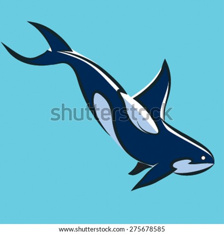 grampus, leaping Killer Whale, Orca Orcinus. Vector illustration  on blue backround - stock vector