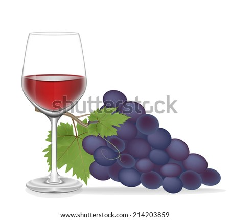 Grape and Glass wine isolated on white background,Vector illustration