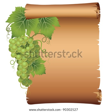 Grape branch with parchment