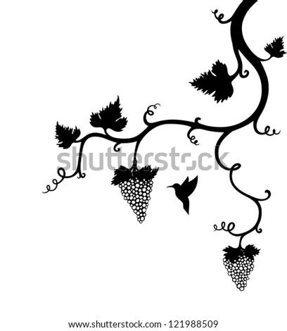 Grape Vine Ornament with small bird - stock vector