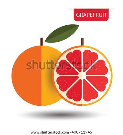 Grapefruit. vector illustration. - stock vector