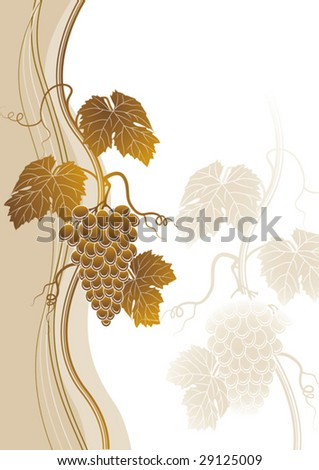 Grapes background - stock vector