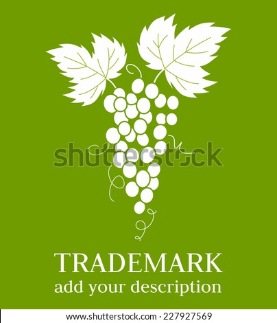 Grapes vines leaves - stock vector