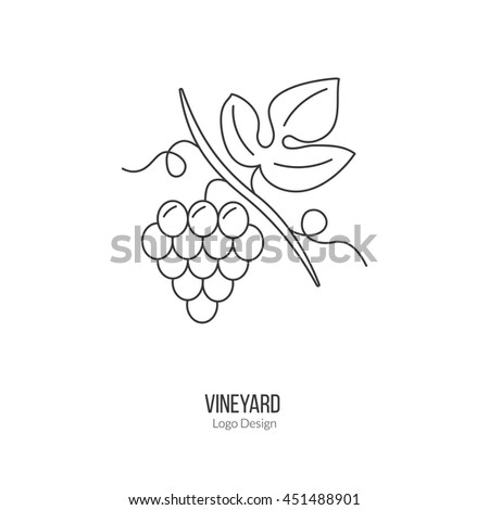 Grapes with leaf. Single logo in modern thin line style isolated on white background. Outline winery symbol. Simple mono linear pictogram. Stroke vector logotype template. - stock vector