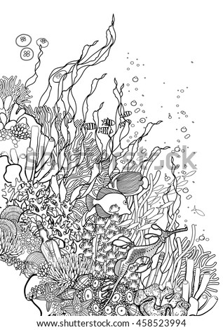 Graphic Coral Reef Drawn Line Art