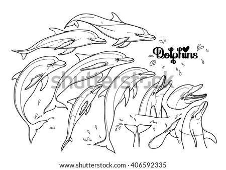 Graphic dolphins collection isolated on white background. Sea and ocean vector creatures in black and white colors. Coloring book page design for adults and kids - stock vector