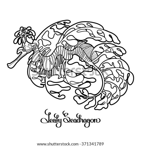 Graphic Leafy Seadragon drawn in a line art style. Sea horse. Ocean creature isolated on white background. Coloring book page design for adults and kids - stock vector