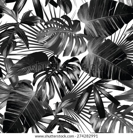 Graphic Plant Palm Leaf Tropic Print Black And White Background Style Exotic Floral Jungle