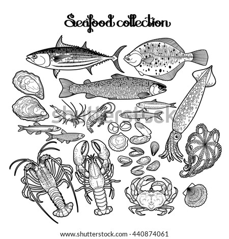 seafood coloring pages - photo#36
