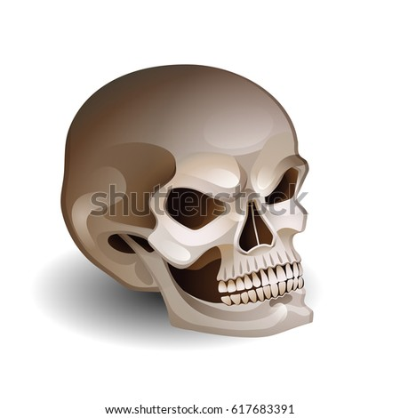 Graphic skull with fearful smile. Vector tattoo art isolated on white background