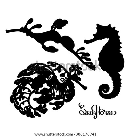 Graphic vector Seahorse silhouettes collection. Ocean creatures isolated on white background - stock vector