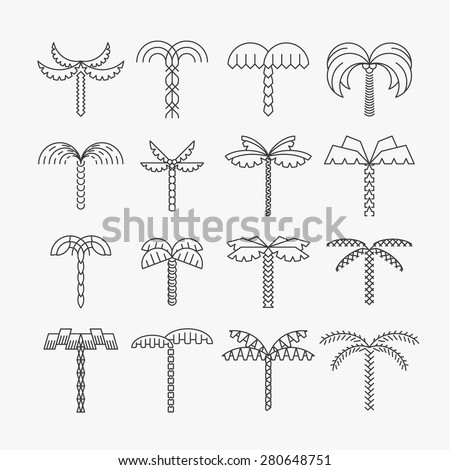 Graphical palm tree set, linear style, isolated vector objects - stock vector