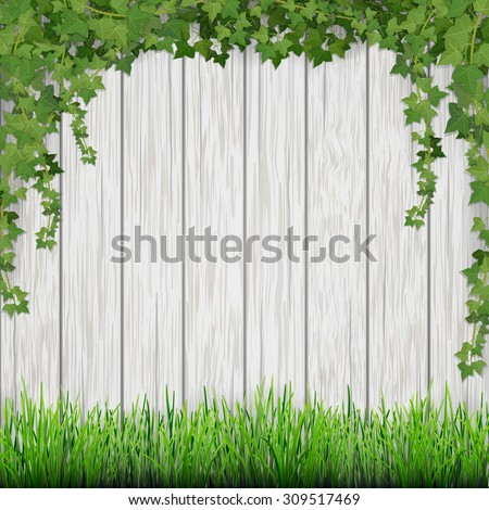 Grass and hanging ivy on white vintage wooden planks background. - stock vector