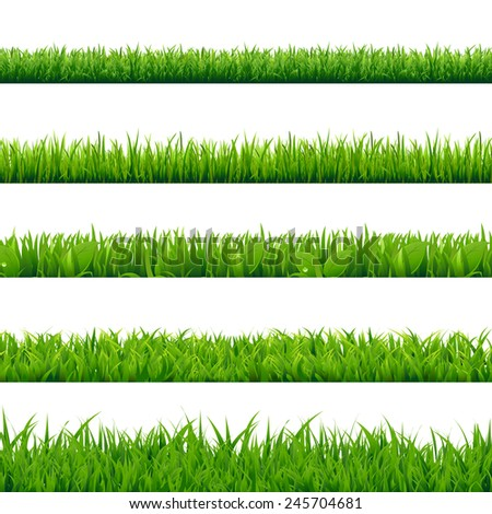 Grass Big Set, Vector Illustration - stock vector