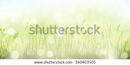 Grass border with faintly visible light blue sky in horizontal, panorama format. Blurry light dots, light effects and partly desaturated colors give it a dreamy feeling for the spring, easter season. - stock vector