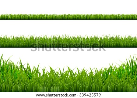 Grass Borders Set, Vector Illustration - stock vector