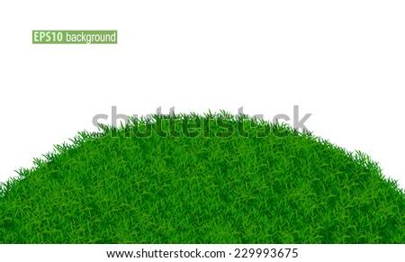 grass field eps10 vector illustration - stock vector