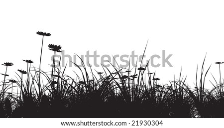 grass field with camomile - stock vector