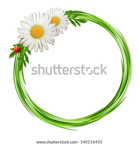 Grass frame with daisy flowers and ladybug . Vector illustration - stock vector