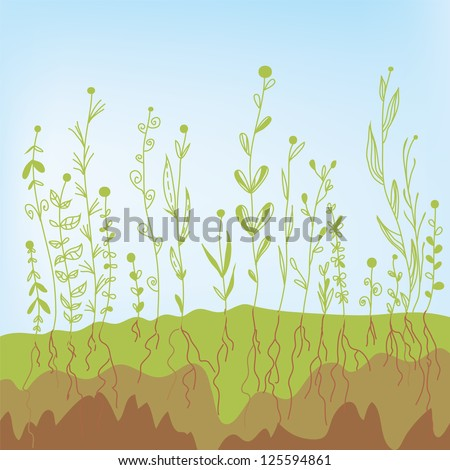 Grass growth with roots in the soil - agricultural illustration