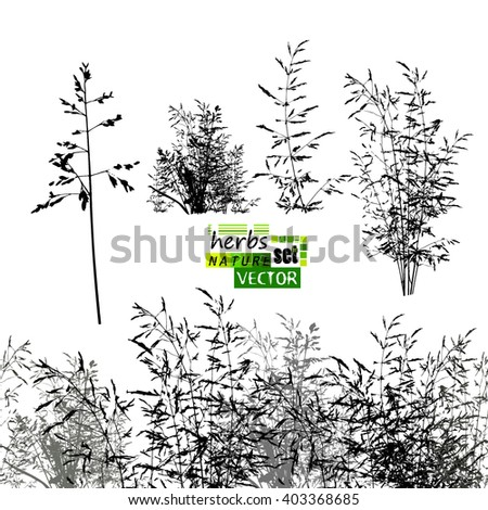 grass horizontal line. grass set. Vector - stock vector