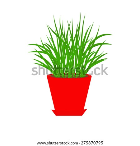 Grass in red flower pot Growing Icon Isolated White background Flat design Vector illustration