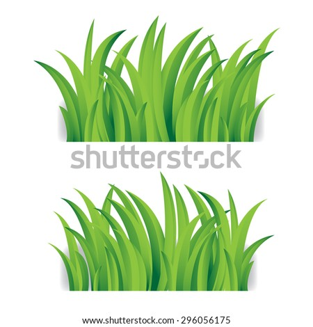 Grass isolated on white - stock vector