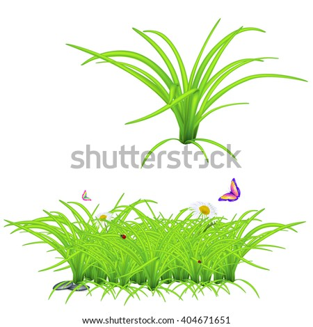 grass, ladybug, butterfly, stone, high quality vector - stock vector
