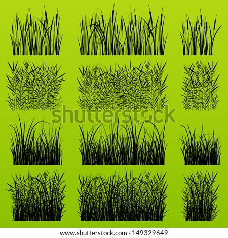 Grass, reed and wild plants detailed silhouettes illustration collection background vector - stock vector