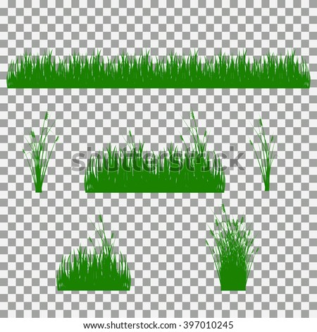 grass, shrubs. A set of various types of grass.  - stock vector