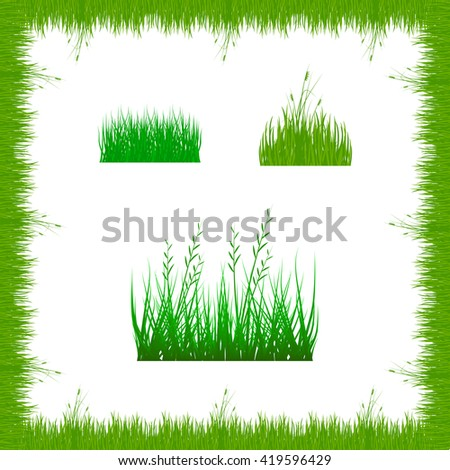 grass, shrubs. A set of various types of grass. . Set of grass vector illustration. Green grass and bushes. - stock vector