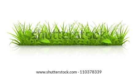 Grass, vector - stock vector